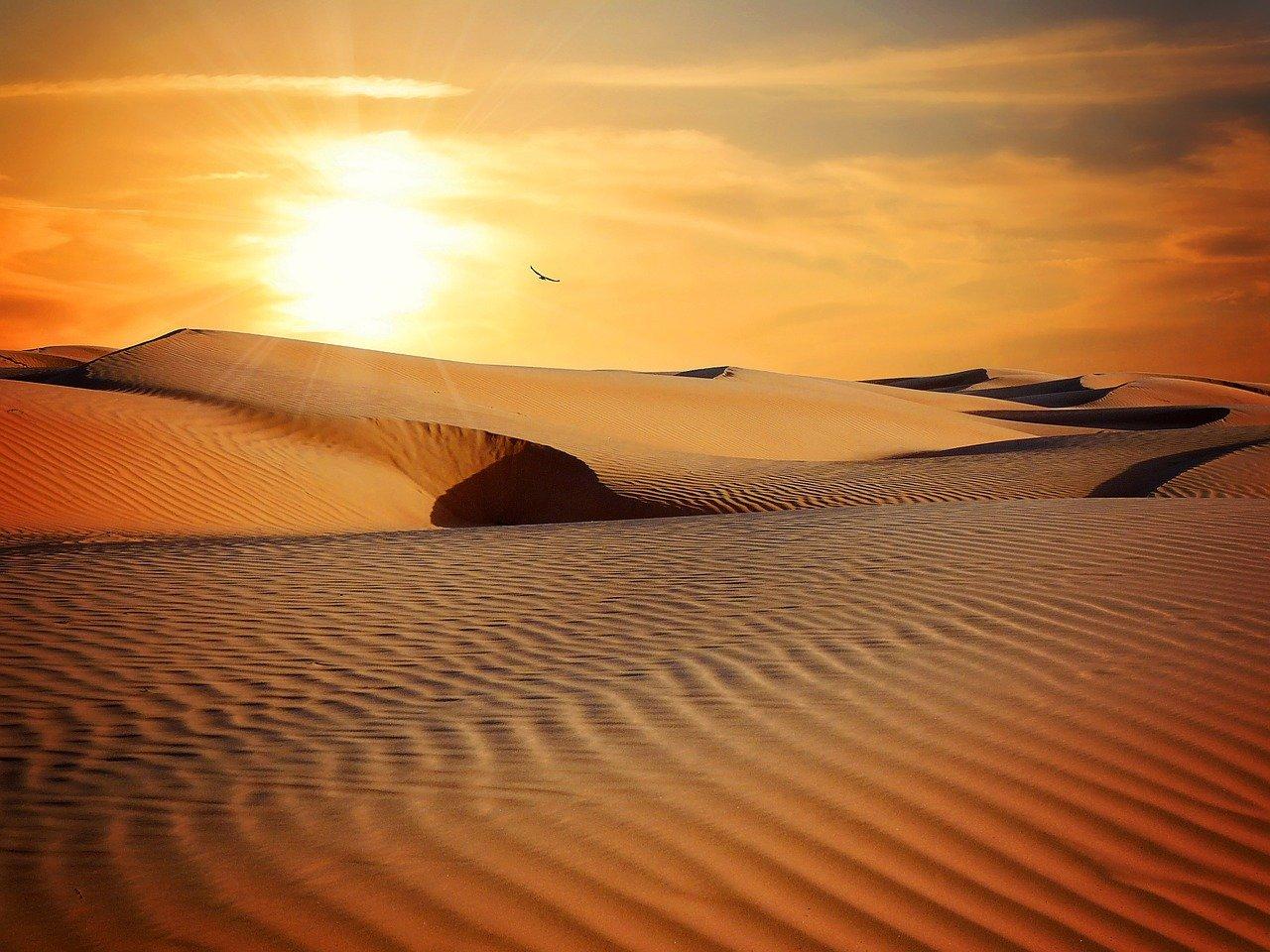 cathymazzola.best-desert