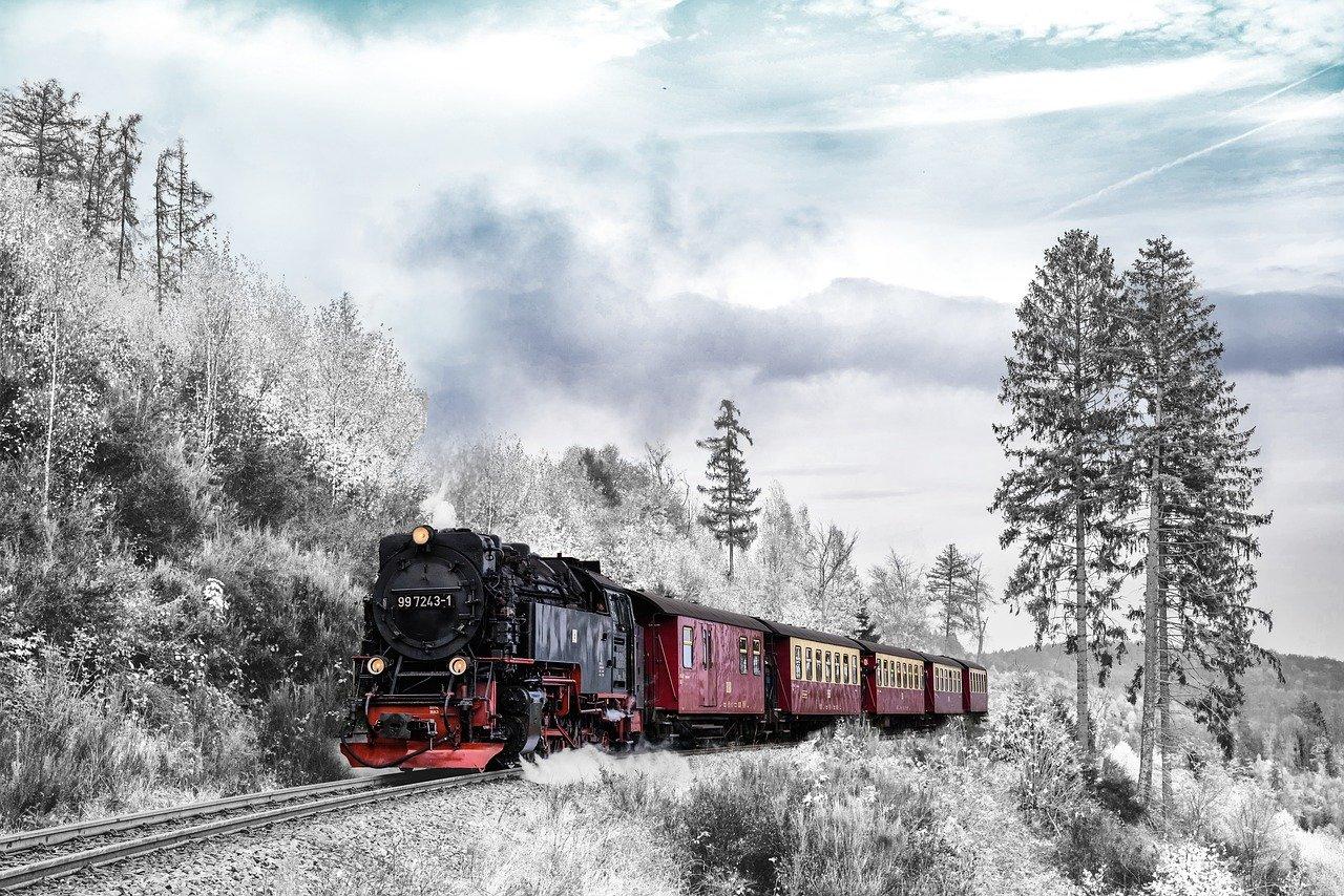 cathymazzola.best-train